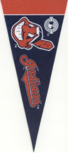 Cleveland Sports Mini Pennants Cavaliers Browns Indians - 1
