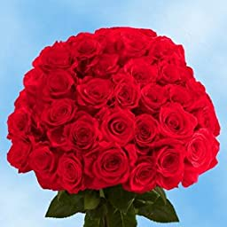 75 Fresh Cut Dark Red Roses Long Stem | Black Magic Rose | Fresh Flowers Express Delivery | Perfect for Birthdays, Anniversary or any occasion.