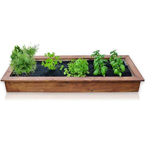Indoor herb garden kit with basil cilantro dill parsley for Indoor gardening amazon