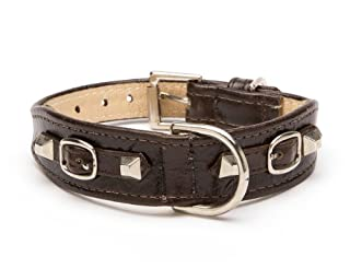 Balencioochee Tabbed Dog Collar,  Buckles, Medium Size 11-14, Green with Silver Buckles