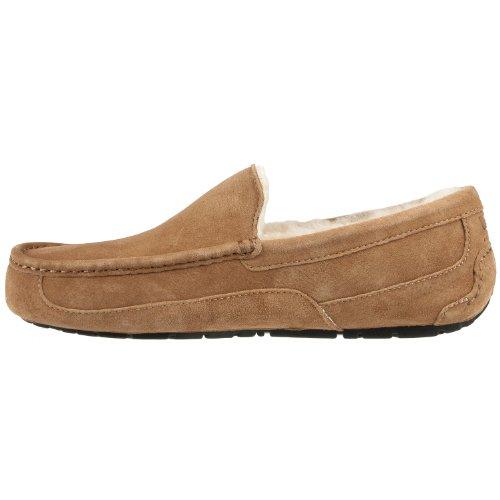 Мужская обувь Мужские тапочки UGG Australia