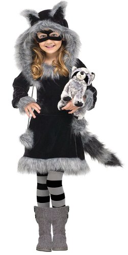 Sweet Raccoon Costume: Toddler Or Girls Halloween Costume Wb (8-10 With Bracelet For Mom) front-997007