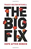 The Big Fix: Hope After Heroin