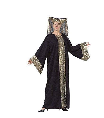 Renaissance Lady Adult Costume one size fits most