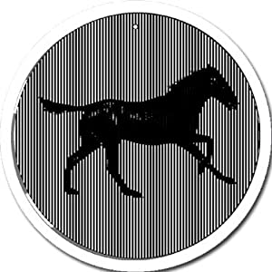 Galloping Horse - Medium 5.5 Inch CineSpinner - Animated Suncatcher