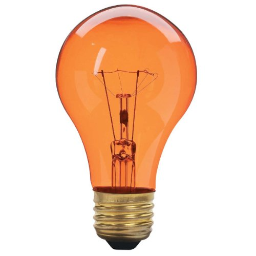 25 Watt A19 Transparent Amber Light Bulb