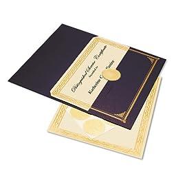 Blue Metallic Award Presentation Kit