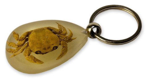 Glow in the Dark Fortune Crab Keychain