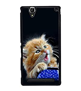 printtech Cute Kitten Eyes Back Case Cover for Sony Xperia T2 Ultra , Sony Xperia T2 Ultra Dual
