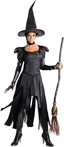 Morris Costumes Women's Oz Witch Costume, Large