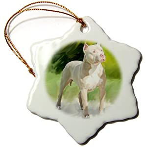 3drose American Pit Bull Terrier Snowflake Porcelain Ornament, 3-Inch