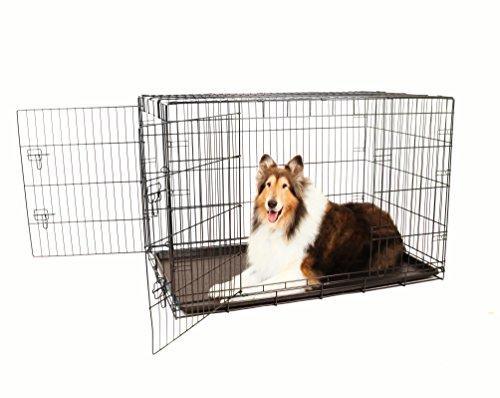 Carlson sichere und kompakte Hundebox mit zwei Türen, Extra groß