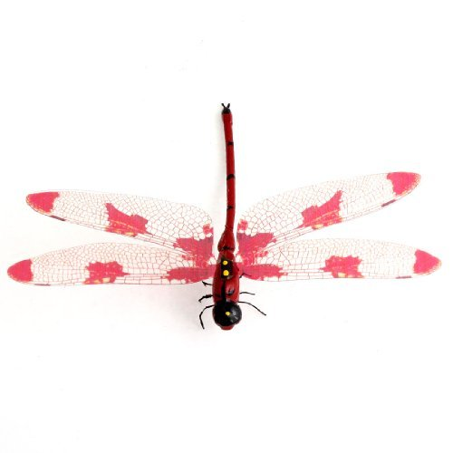 Kühlschrank Oberflächen Red Dragonfly Design Magnet Kühlschrank-Aufkleber