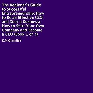The Beginner's Guide to Successful Entrepreneurship Audiobook