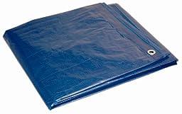 10\' x 12\' Dry Top Blue Full Size 7-mil Poly Tarp item #010121