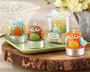 whooo s the cutest baby owl owl kitchen decor - Owl Home Decor