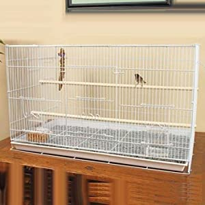 Petco Designer White Finch Flight Cage