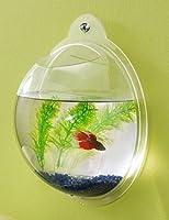 Wall Mount Hanging Beta Fish Bubble Aquarium Bowl Tank by KAZE HOME