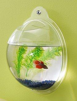 Wall Mount Hanging Beta Fish Bubble Aquarium