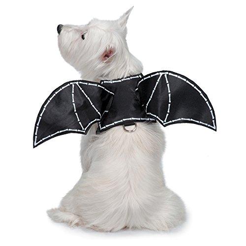 [Zack & Zoey Glow-in-the-Dark Bat Wings Harness for Dogs, Medium] (Bat Wings Dog Costume)