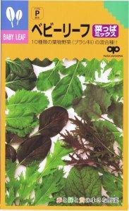 【種子】ベビーリーフ・菜っぱミックス 20ml