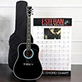 Esteban American Legacy Limited Edition Black - Turquoise Guitar - Blem
