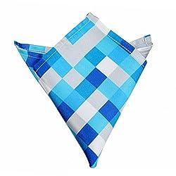 Blacksmithh Water Blue Checks Printed Pocket Square