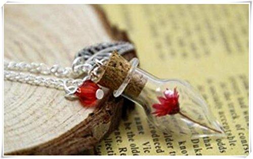 rustico-piccolo-principe-matrimonio-botanica-terrario-collana-vetro-fiori-secchi-rosa-rossa