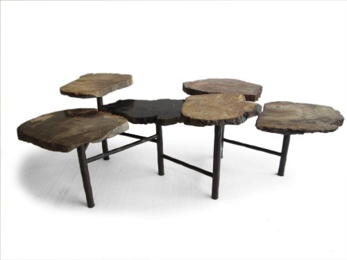 Control Brand FM134RUST Good Form Petrified Wood multi-tiered cocktail table with hand forged steel base