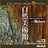 MIXA IMAGE LIBRARY Vol.12 自然美術館