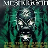 Meshuggah True Human Design