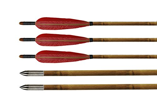 Huntingdoor-DIY-Red-Turkey-Feathers-Fletching-Practice-Arrows-Bamboo-Shaft-Archery-Target-Arrows-with-Practice-Silver-Points-for-Recurve-Bow-6pack