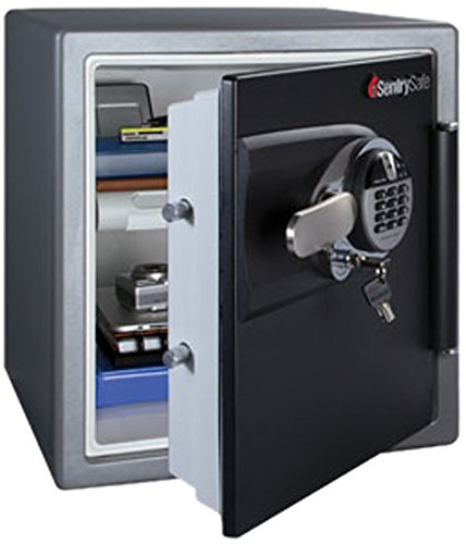 SentrySafe-DSW3930-1.2-Cubic-Feet-Biometric-Fire-Safe-with-biometric-lock