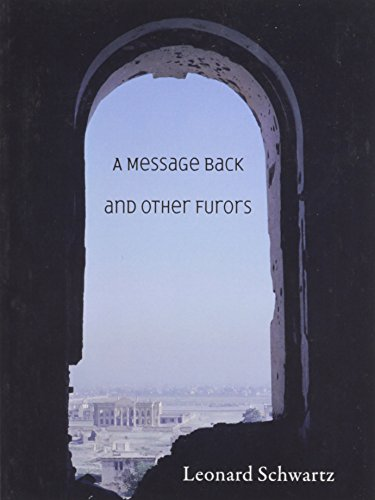 A Message Back and Other Furors PDF