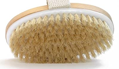 Cheapest Dry Skin Body Brush - Improves Skin's Health And Beauty - Natural Bristle - Remove Dead Skin And Toxins, Cellulite Treatment , Improves Lymphatic Functions, Exfoliates, Stimulates Blood Circulation from Wholesome Beauty - Free Shipping Available