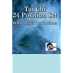 Tai Chi 24 Position Set