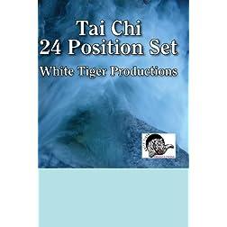 Tai Chi 24 Position Set