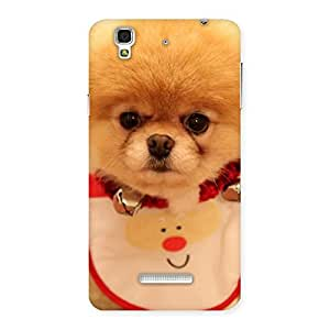 Delighted Cutest Pup Multicolor Back Case Cover for YU Yureka Plus