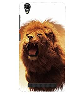 PRINTSHOPPII LION Back Case Cover for Intex Aqua Power Plus
