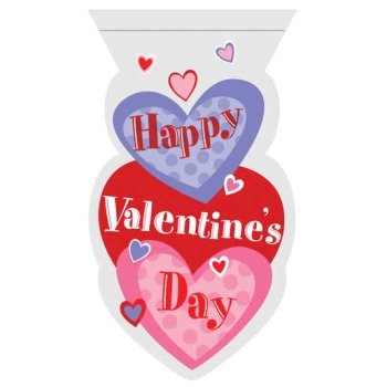 Hearts Valentine's Cello Candy Bags w/Zipper Seal 12 Per Pack