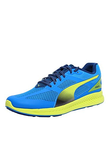 Puma - Ignite Mesh, Sneakers da uomo, Blu (Blau (cloisonné-poseidon-sulphur spring 01)), 43