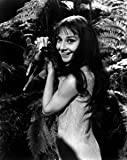 Audrey Hepburn Green Mansions Holding Baby Deer - 8x10 Photograph High Quality