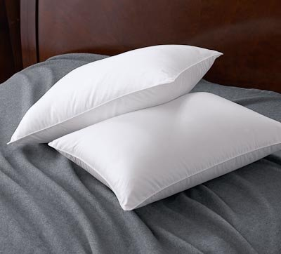 Chezmoi Collection White Super Soft Goose Down Alternative Bed Pillow King (set of 2)