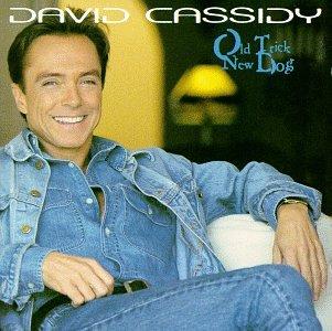 DAVID CASSIDY - Old Trick, New Dog - Zortam Music