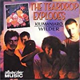 The Teardrop Explodes Kilimanjaro/Wilder