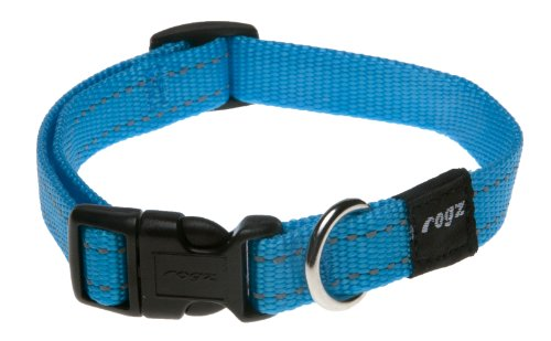 Rogz Utility Medium 5/8-Inch Reflective Snake Dog Collar, Turquoise