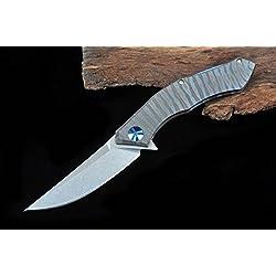 Hot Arrival Blue Moon Folding Knife D2 Blade TC4 Titanium Handle Ball Bearing Flipper Tactical Camping knife Outdoor Tools