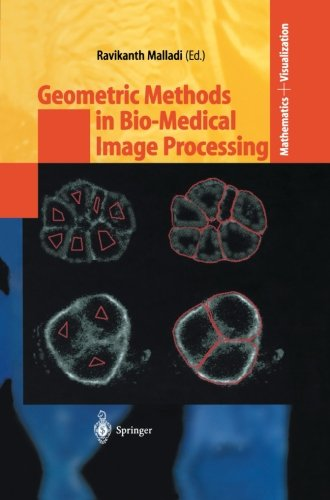Geometric Methods In Bio-Medical Image Processing (Mathematics And Visualization)