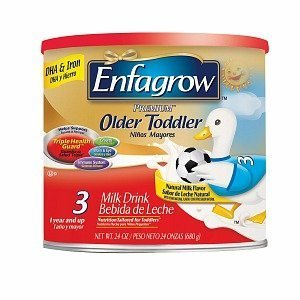 Enfagrow Premium Natural Milk Flavor Powder 24 Oz