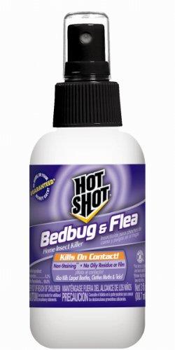 raid fogger kill bed bugs rat pest control london. Black Bedroom Furniture Sets. Home Design Ideas